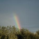 La Valle d'Itria arcobaleno