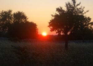 La Valle d'Itria tramonto