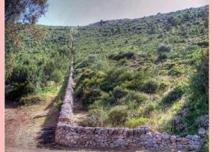 La Valle d'Itria muro a secco