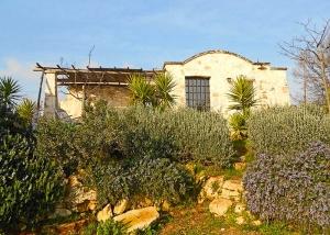 lamia doppia con girdino mediterraneo di piante officinali